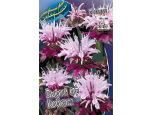 Монарда Monarda Beauty of Cobham