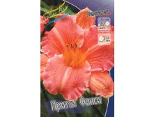 Hemerocallis_Pretty Fancy.jpg